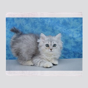 Ella - Silver Tabby Ragamuffin Kitten Throw Blanke