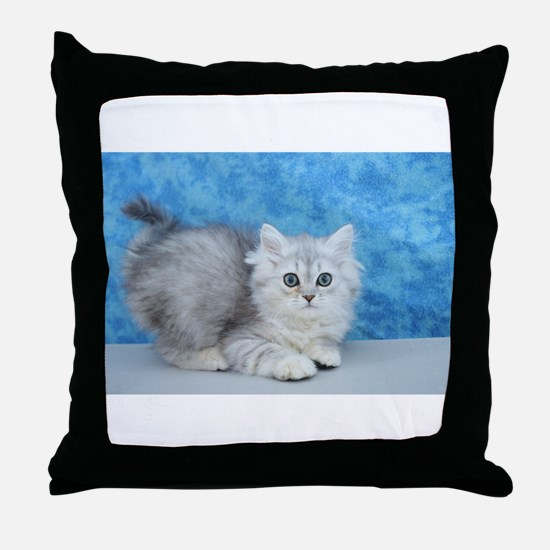 Ella - Silver Tabby Ragamuffin Kitten Throw Pillow