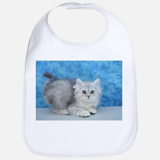 Ella - Silver Tabby Ragamuffin Kitten Baby Bib