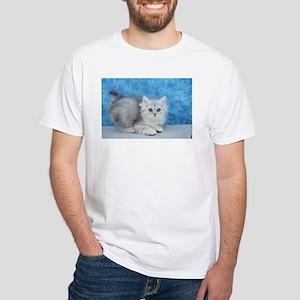 Ella - Silver Tabby Ragamuffin Kitten T-Shirt