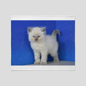 Fonzie - Blue Point Ragdoll Kitten Throw Blanket