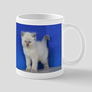 Fonzie - Blue Point Ragdoll Kitten Mugs