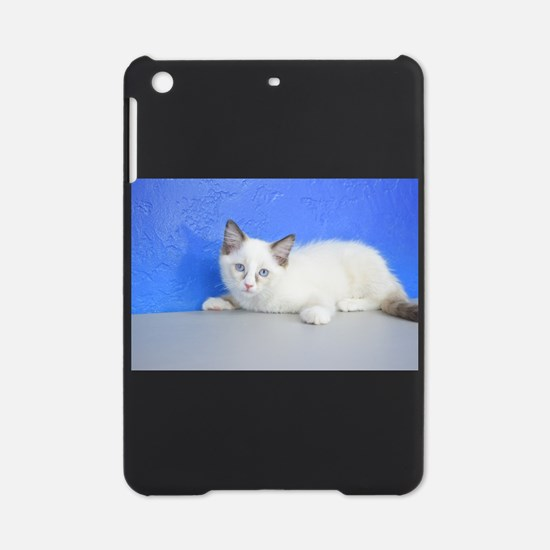 Ginger - Seal Bicolor Ragdoll Kitten iPad Mini Cas