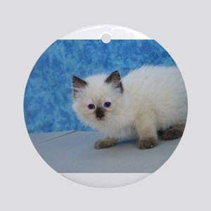 Holly - Seal Point Ragdoll Kitten Round Ornament