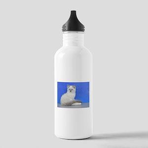 Isabelle - Blue Mitted Ragdoll Kitten Water Bottle