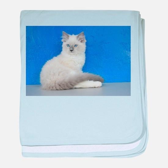 Isabelle - Blue Mitted Ragdoll Kitten baby blanket