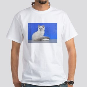 Isabelle - Blue Mitted Ragdoll Kitten T-Shirt