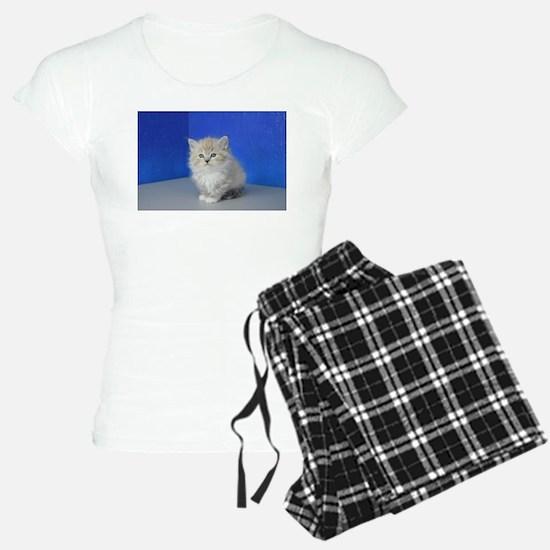Jenna - Seal Mitted Lynx Mink Ragdoll Kitten Pajam