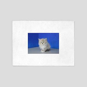 Jenna - Seal Mitted Lynx Mink Ragdoll Kitten 5'x7'