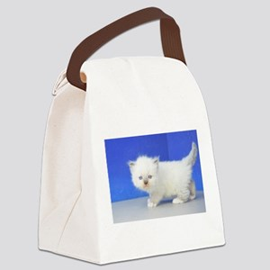 Jimmy - Seal Mitted Ragamuffin Kitten Canvas Lunch