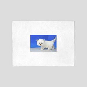 Jimmy - Seal Mitted Ragamuffin Kitten 5'x7'Area Ru
