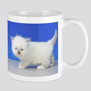 Jimmy - Seal Mitted Ragamuffin Kitten Mugs