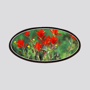 Indian Paintbrush Patch