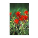 Indian Paintbrush 20x12 Wall Decal