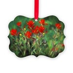 Indian Paintbrush Picture Ornament