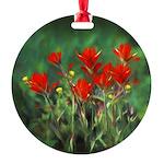 Indian Paintbrush Round Ornament