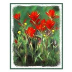 Indian Paintbrush Small Poster