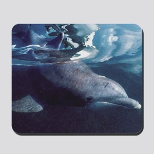 Dolphin Vision Mousepad