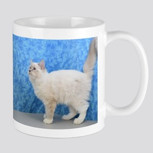 Mabel - Blue Mitted Lynx Ragdoll Kitten Mugs