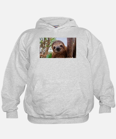 sloth life Sweatshirt