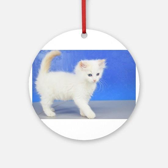Moses - Cream Bicolor Ragdoll Kitten Round Ornamen
