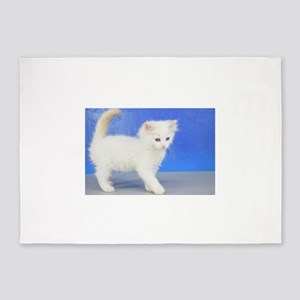 Moses - Cream Bicolor Ragdoll Kitten 5'x7'Area Rug