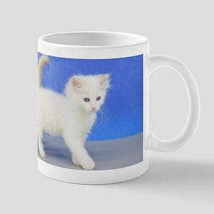 Moses - Cream Bicolor Ragdoll Kitten Mugs