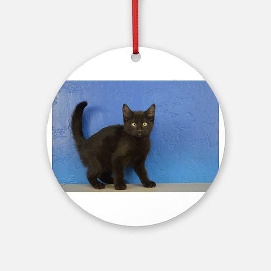 Nadia - Black Solid Munchkin Kitten Round Ornament