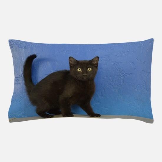 Nadia - Black Solid Munchkin Kitten Pillow Case