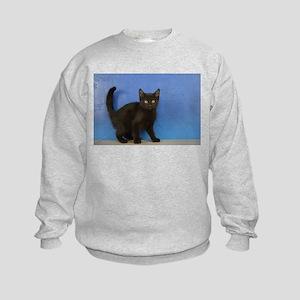 Nadia - Black Solid Munchkin Kitten Sweatshirt