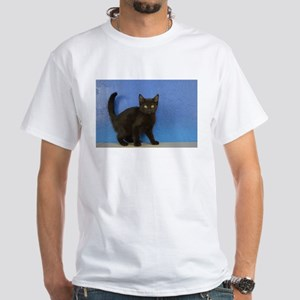 Nadia - Black Solid Munchkin Kitten T-Shirt