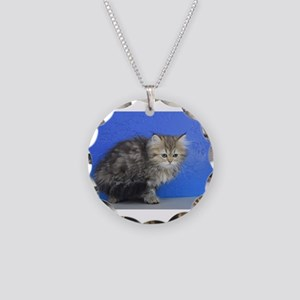 Opal - Silver Golden Tabby Ragamuffin Kitten Neckl