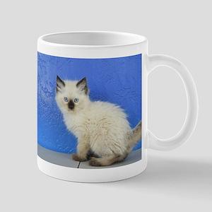 Sven - Seal Point Ragdoll Kitten Mugs