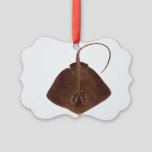 RAY Ornament