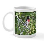 Rose-breasted Grosbeak Mug