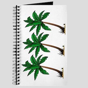 PALMS Journal