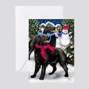 flatsnow ls copy Greeting Cards