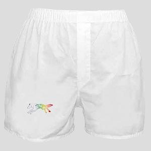 magic fox Boxer Shorts