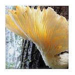 Oyster Mushroom Tile Coaster