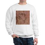 Coyote Front Track Sweatshirt
