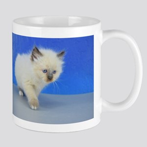 Corey - 126 Seal Mitted Ragamuffin Kitten Mugs