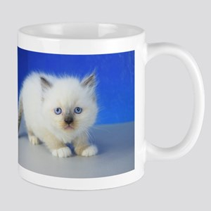 Jimmy - Ragamuffin Kitten 126 Seal Mitted Mugs