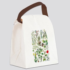 Botanical Illustrations - Larouss Canvas Lunch Bag