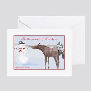 Charming Foal Holiday Cards (Pk of 10) Greeting Ca