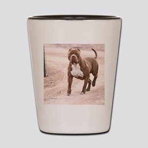 Hexin the pit bull Shot Glass