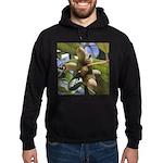 Acorns Sweatshirt