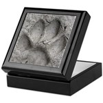 Gray Fox Track Keepsake Box