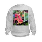 Madrone Berries Sweatshirt