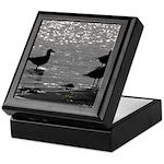 Gulls Wading Keepsake Box