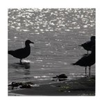 Gulls Wading Tile Coaster